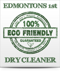 Eco friendly purse cleaning in Edmonton